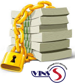 Vietnam Inspection and Sourcing Solution   VINS-Solution
